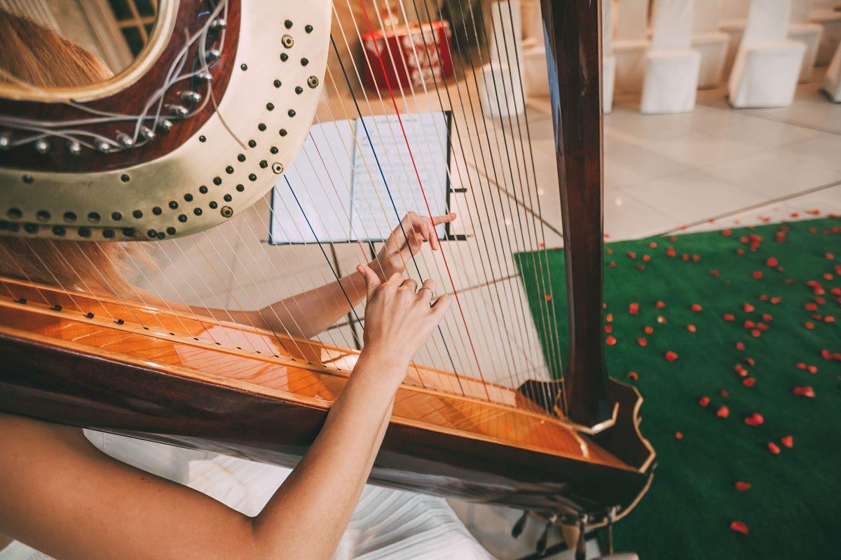 Arpa e Violino Musica Matrimonio Brescia